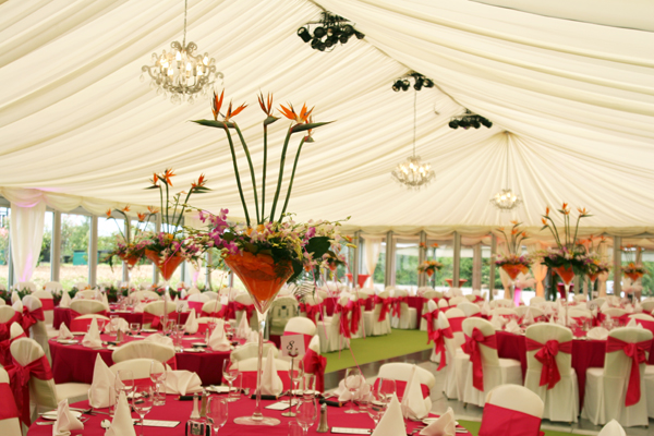 marquee-layout